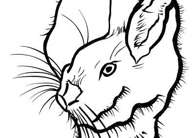 Rabbit089