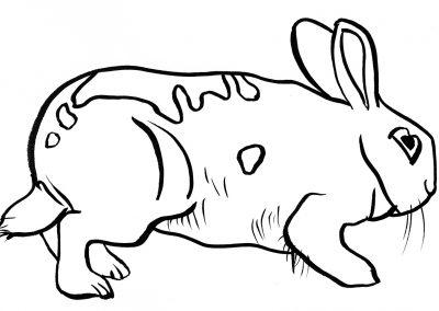 Rabbit103