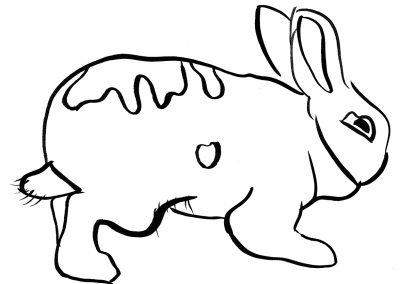 Rabbit107