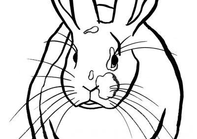rabbit226