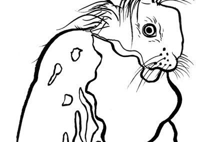 rabbit230